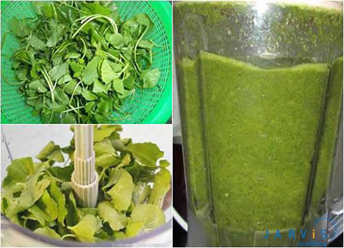 rau má rửa sạch và cho vào máy sinh tố